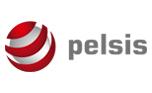 PELSIS.jpg